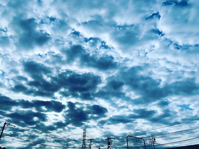 秋の空に浮かぶ朝のうろこ雲